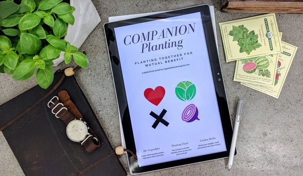 Thumb companion planting ebook for sale