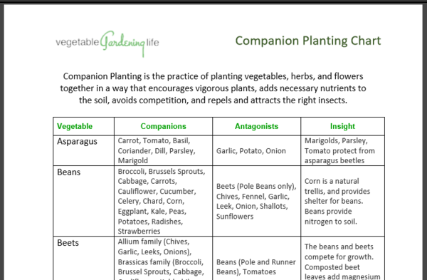 Companion Planting Chart (printer friendly)